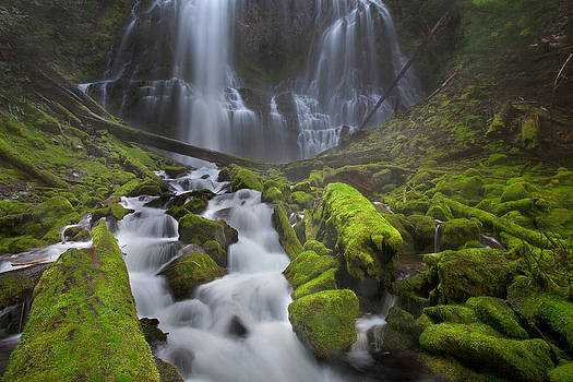 Proxy Falls by David  Forster