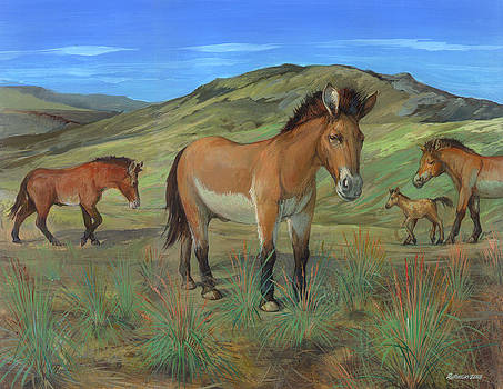 Przewalski's Horse by ACE Coinage painting by Michael Rothman