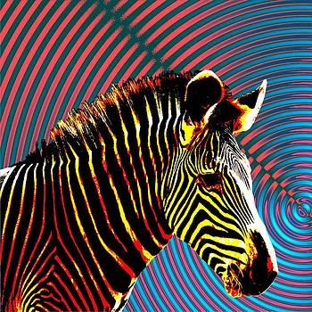 Psychedelic Zebra by Nandan NAGWEKAR