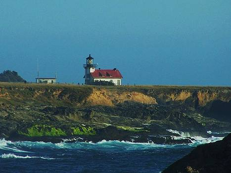 Pt Cabrillo by Christine Drake
