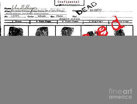 Public Enemy No 1. Confidential by Brittany Perez