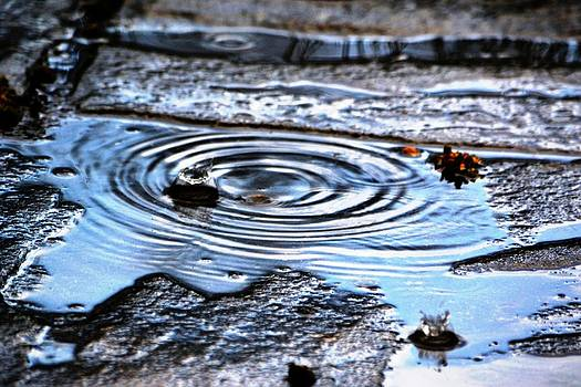 Puddle water droplet by Aqil Jannaty