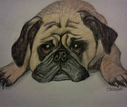 Pug by Christy Saunders Church