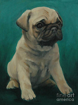 Pug Puppy by Pet Whimsy  Portraits