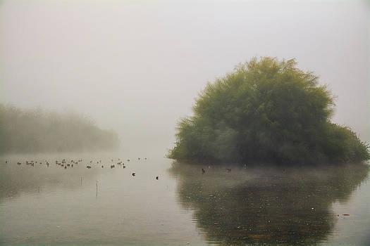 Saija  Lehtonen - Pure Serenity at Dawn