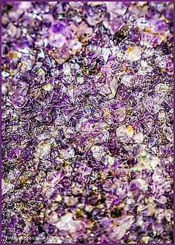 LeeAnn McLaneGoetz McLaneGoetzStudioLLCcom - Purple Amethyst Stone