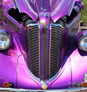 Purple Beauty by Deborah Fay