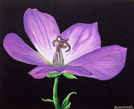 Purple blue flower by Anthony Masterjoseph