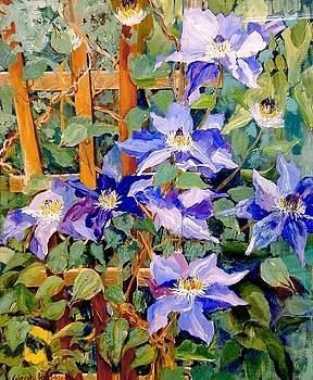 Purple Clematis by Wendy Head
