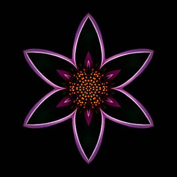 Purple Echinacea Flower Mandala by David J Bookbinder
