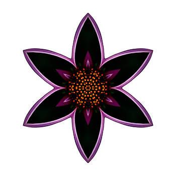 Purple Echinacea I Flower Mandala White by David J Bookbinder