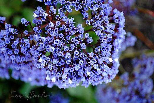 Purple  by Empty Bee Artwork  And Photography