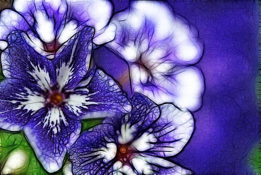 Cindy Boyd - Purple Flower Abstract