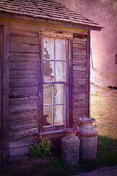 Judy Hall-Folde - Purple Haze on the Prairie