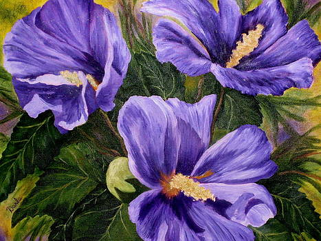 Purple Hibiscus by Darla Brock