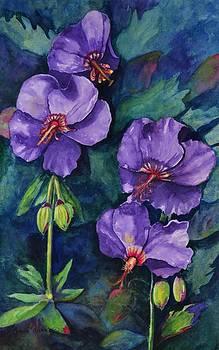 Purple Hibiscus by Jane Ricker