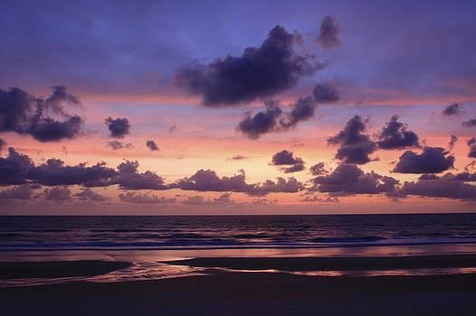 Purple morning by Kimberly Oegerle
