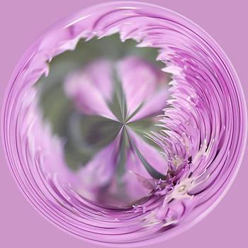 Kim Hojnacki - Purple Orb