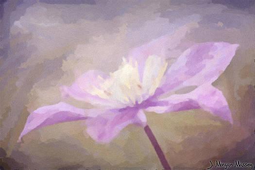 Purple Passion by J Morgan Massey