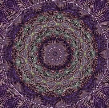 Purple Peacock by Yvette Pichette