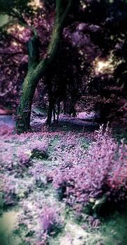Purple Rain by Denisse Del Mar Guevara