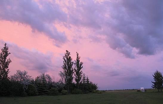 Purple Skies by Linda Koch