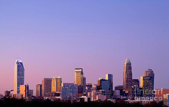 Purple skyline - Charlotte NC by Patrick Schneider