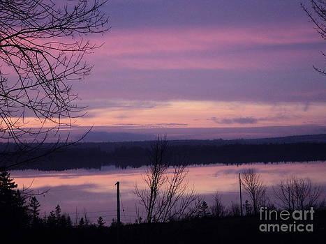 Purple Sunrise by Jesslyn Fraser
