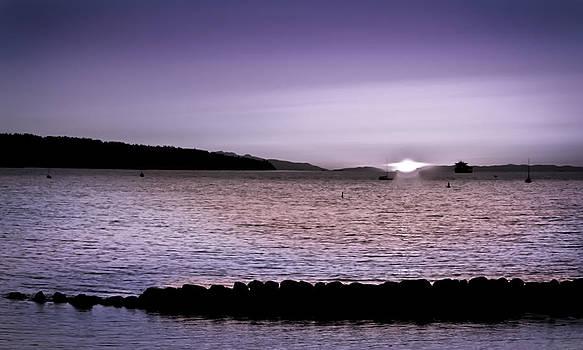 Purple Sunset at English Bay by Eva Kondzialkiewicz