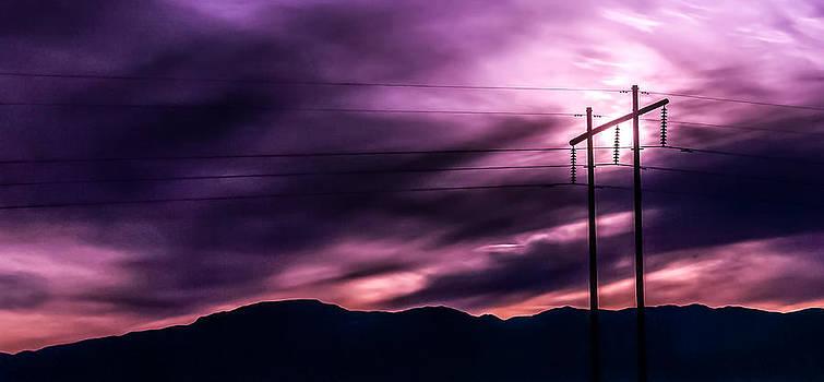 Purple Wires by Janice Sullivan
