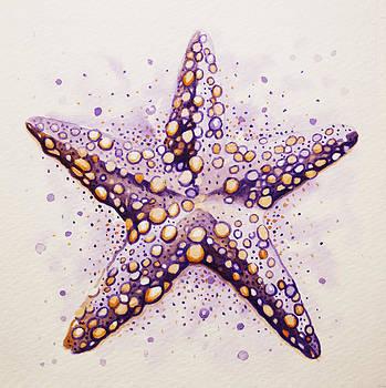 Purpura Starfish by William Love