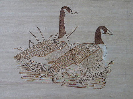 Pyrography -goose by Ashraf Mohammed Musaliyarkalathil