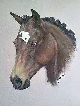 Quarter Horse by Janet Moss