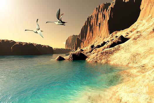 Corey Ford - Quasimodo Seascape
