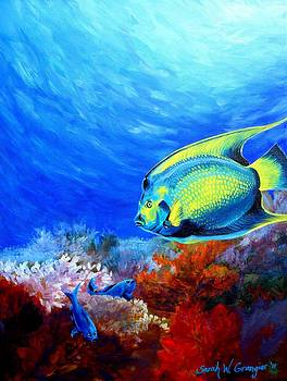 Queen Angelfish and Damsels by Sarah Grangier