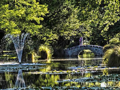 Queenstown Gardens Fountain by Karen Lewis