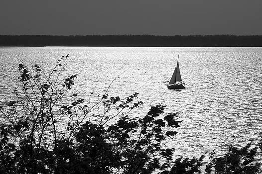 Quick Silver - sailboat on Lake Barkley by Jane Eleanor Nicholas