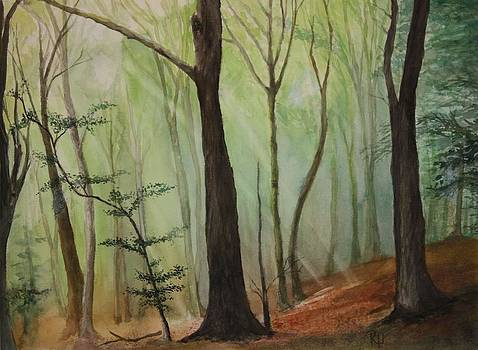 Quiet Forest by Rachel Hames