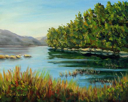 Quiet Mountain Lake, Acadia, ME by Elaine Farmer