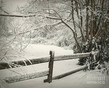 Quiet Stillness by Nancy Dole McGuigan