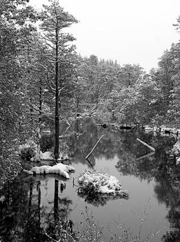 Quiet stram after the snowstorm by Allen Beilschmidt