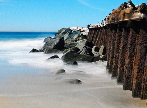 R E C L A M A T I O N .  Playa Del Rey, California.  by Joe Schofield