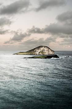 Rabbit Island by Jason Bartimus