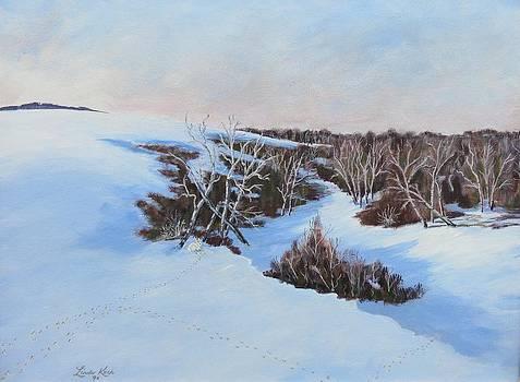 Rabbit Tracks by Linda Koch