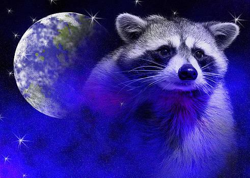 Jeanette K - Raccoon Dream4