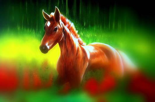 Race Horse In The Garden by Premkumar C N