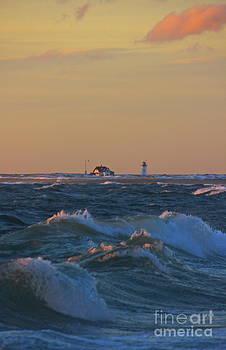 Amazing Jules - Race Point Lighthouse