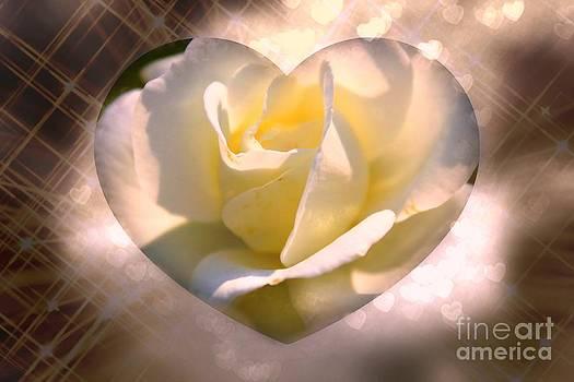 Radiant Love by Judy Palkimas