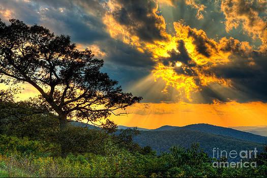 Radical Blue Ridge Sunset  I by Dan Carmichael