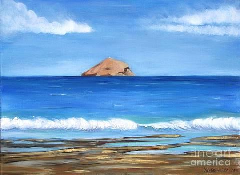 Raftis Islet by Kostas Koutsoukanidis